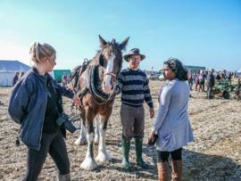 Ploughing Match in Kelmscott September 26th 2015