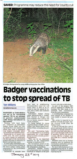 Badgers in Oxfordshire to be vaccinated against TB